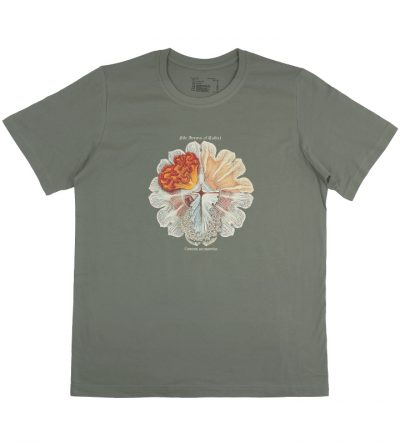 t-shirt annasethe haeckel