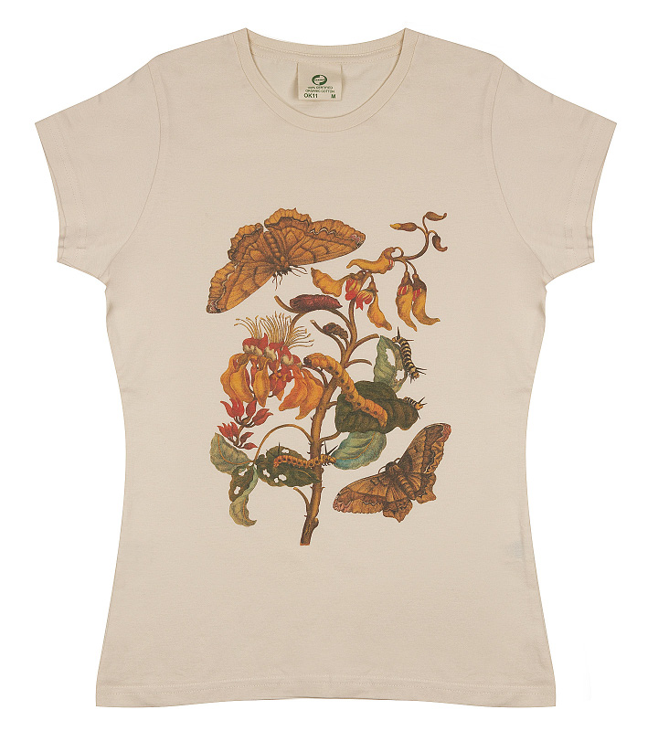 t-shirt ladies, Merian, Butterfly