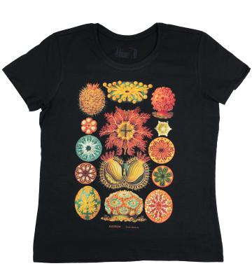 haeckel ascidiae corral t-shirt